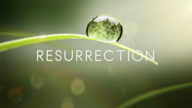 logo_-onair_resurrection_57778_302_140307200731