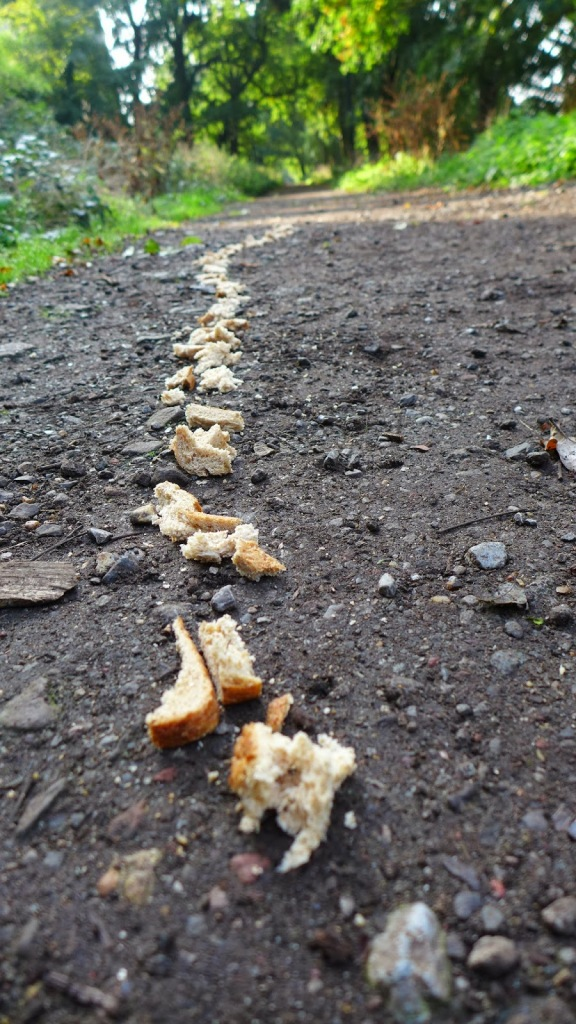 trail-of-breadcrumbs1